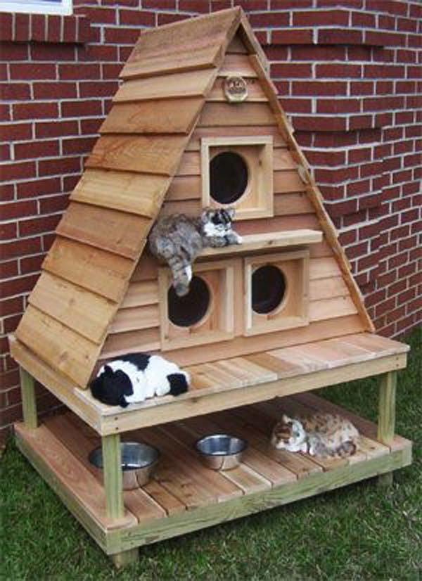 Домик для кошки своими руками для дома и улицы