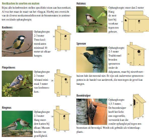 Nestkast maken van steigerhout en vogelhokjes per vogelsoort.