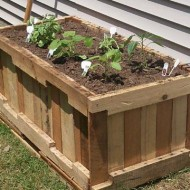 pallet-plantenbak