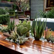 tuintafel-met-planten
