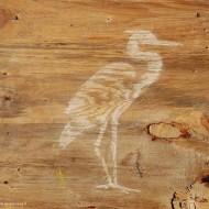 hout-bleken