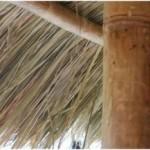 Met de bamboe als steun is dit een heel sterk dak van riet.