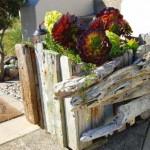Leuk voor bij het bankje van steigerhout, maak een bloembak van aangespoeld drijfhout.