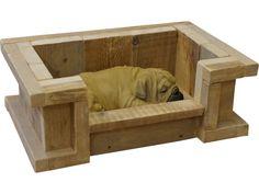 Hond in een steigerhout hondenmand.