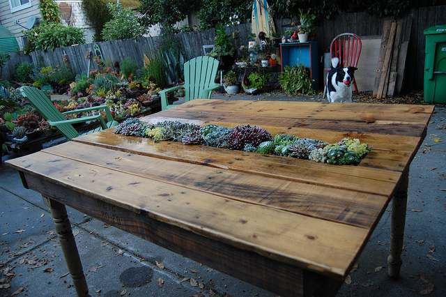 pallet tafel met planten in het tafelblad. Black Bedroom Furniture Sets. Home Design Ideas