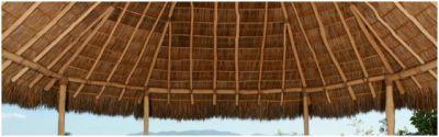 Prachtig dak van natuurlijk materiaal, in de tropen.