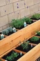 Op weinig ruimte kan zo tóch heel wat groente worden verbouwd.