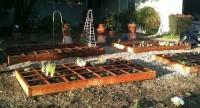 Vakkentuin plantenbak, stadstuintjes met verding in vakken.